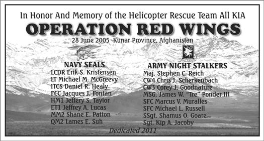 Panel 1 Red Wings Helo Rescue Team